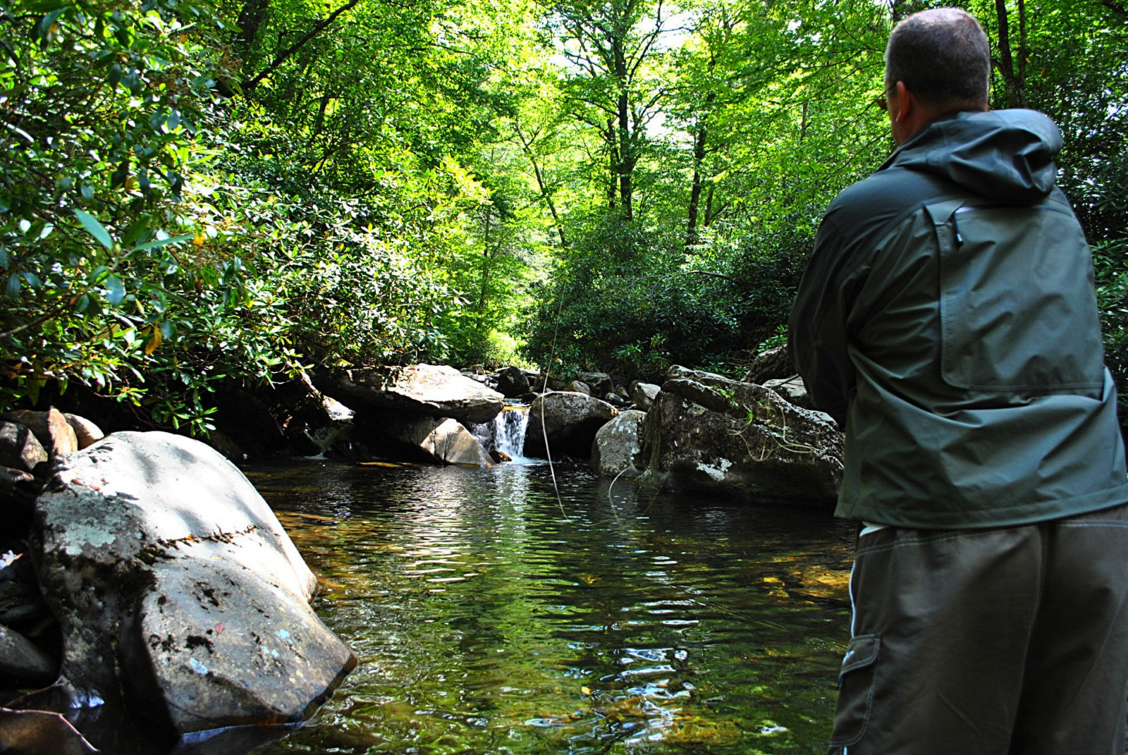 Rates guided fly fishing in cherokee ncguided fly for Fly fishing cherokee nc