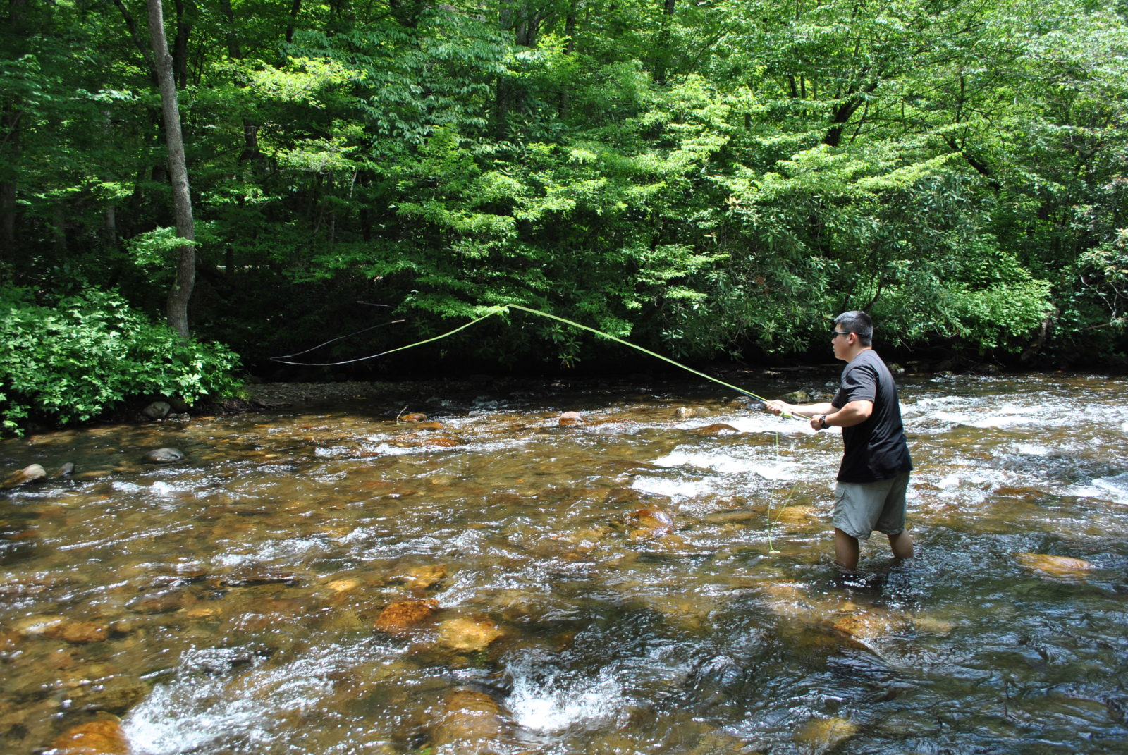 Photo gallery fly fishing guides and trips in gatlinburg for Fishing in gatlinburg tn