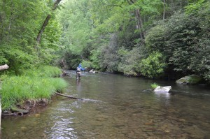 Hazel Creek Fly Fishing and Camping Trip