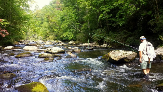 Hazel Creek Fly Fishing, Hazel Creek Fly Fishing Guides, Hazel Creek Camping trips, Fly Fishing the Smokies
