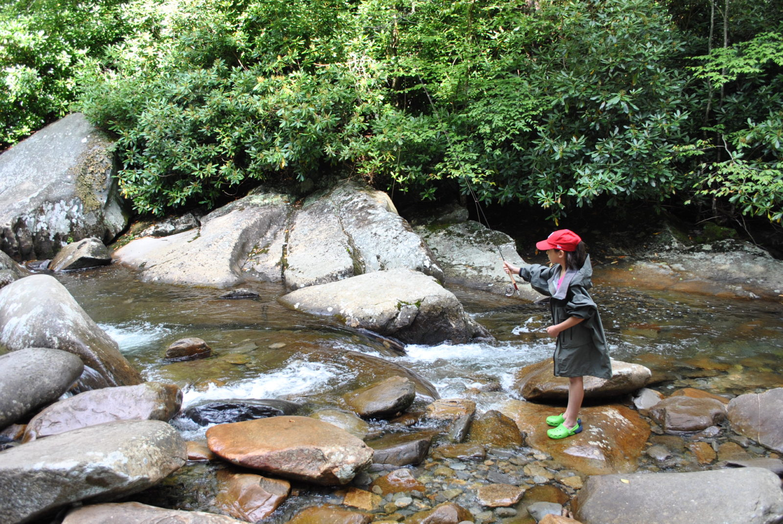 Photo gallery 2 for Fishing in gatlinburg tn
