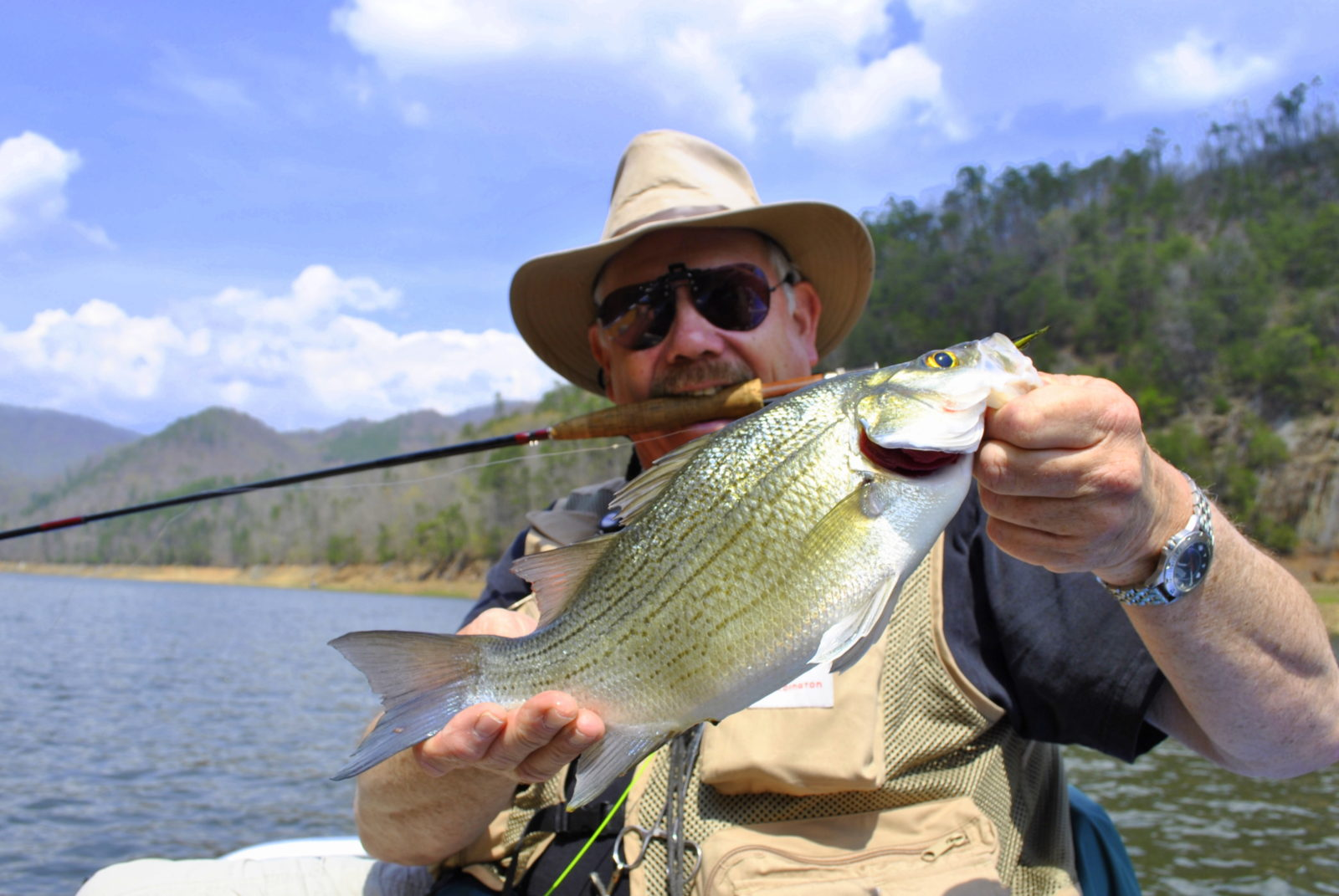 Fontana lake guided fly and spin fishing for bass trout for Bass fly fishing