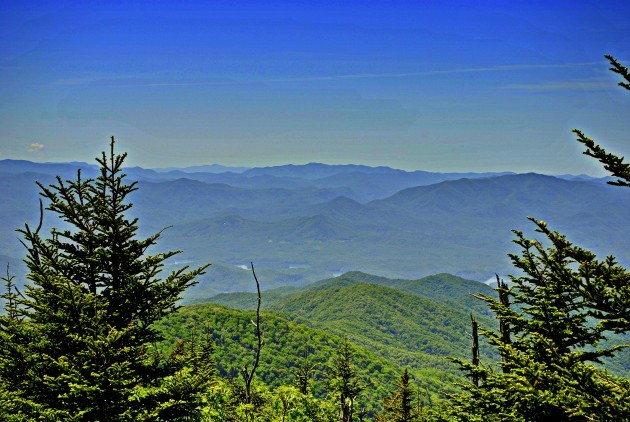 Great Smoky Mountains National Park, Fly Fishing, Fly Fishing the Smokies