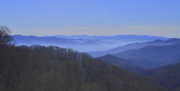 Great Smoky Mountains, Fly Fishing, Fly Fishing the Smokies, Guides and Trips, Fishing Tours
