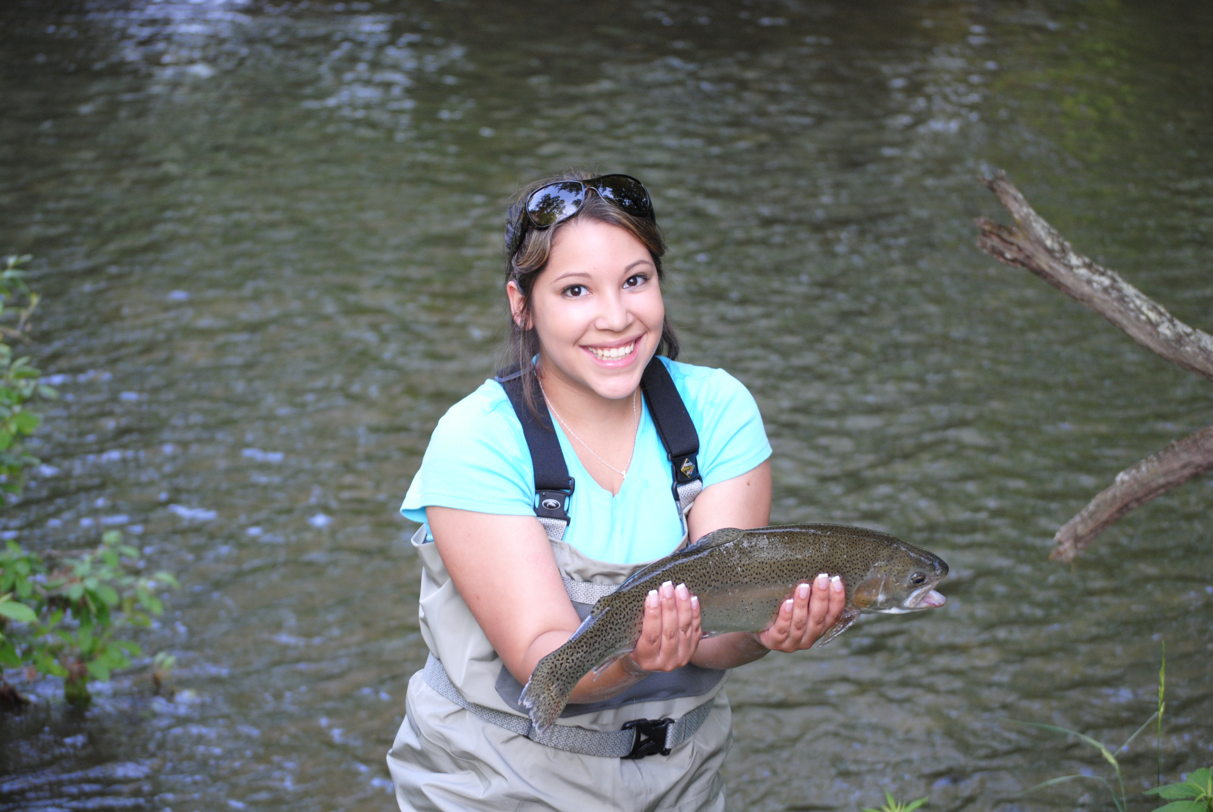 Summer trout fishing special fly fishing in maggie valley for Fishing in gatlinburg tn