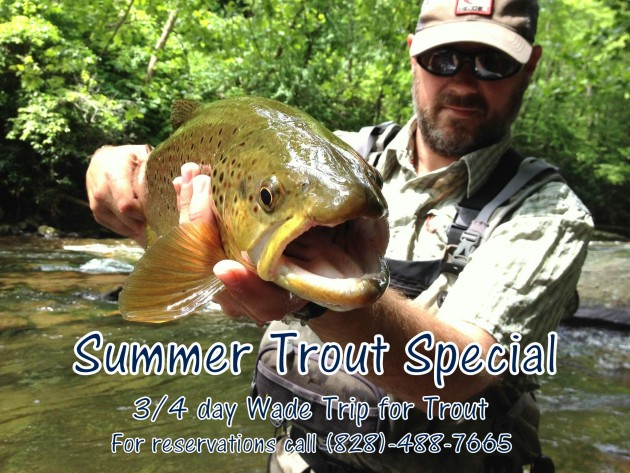 Fly Fishing the Smokies, Summer Trout Special,