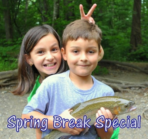 Spring Break Special, Fly Fishin gthe Smokies, Sprin Specials, Fly Fishing Trips, Guided Fly Fishing , Gatlinburg, Pigeon Forge, Sevierville, Cherokee, Bryson City, North Carolina, Tennessee