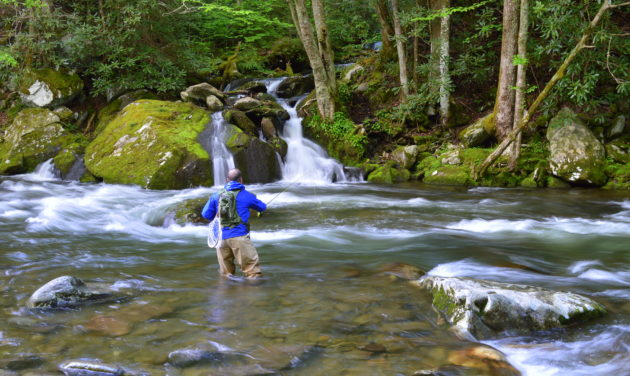 Wade trips fly fishing the great smoky mountains for Fishing in gatlinburg tn