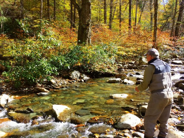 Great smoky mountains fishing report 9 27 16 for Gatlinburg trout fishing