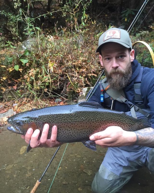 Great smoky mountains fishing report november 8th fly for Smoky mountain trout fishing