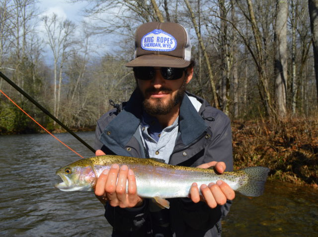 Great smoky mountains fishing report january 22nd for Smoky mountain trout fishing