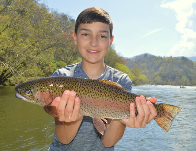 Spring Fly Fishing | Bryson City, Gatlinburg, Smoky Mountains