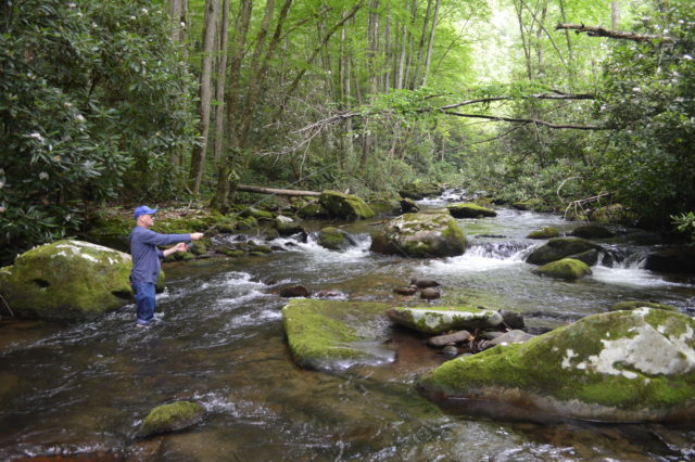 Summer Fly Fishing in the Smoky Mountains, Trout Fishing Gatlinburg Pigeon Forge and Bryson City