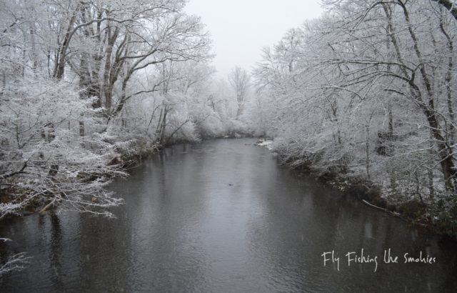 Great Smoky Mountains Fishing Report December 7th