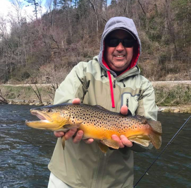 Tuckasegee River Fly Fishing Report, Big Brown Trout