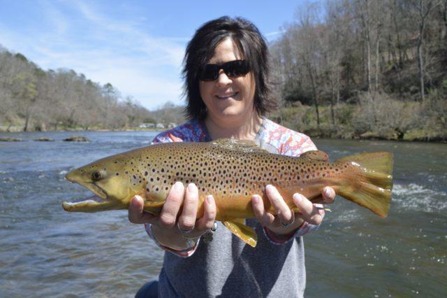 Tuckasegee River Fishing Report April, WNC Fly Fishing