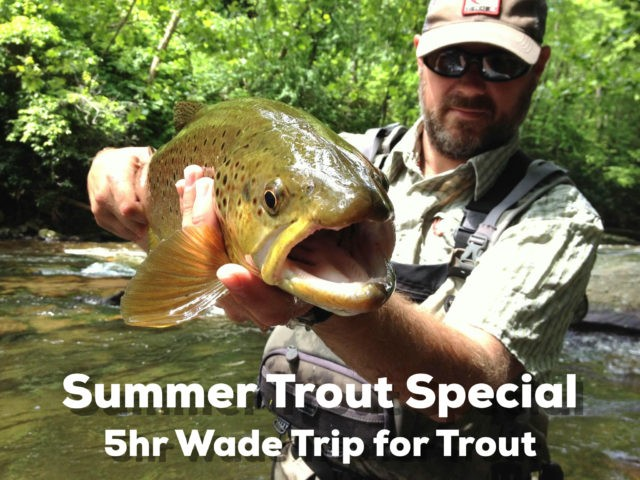 Summer Trout Special, Guided Fly Fishing Trips for Trout in Great Smoky Mountains near Gatlinburg, Pigeon Forge, Bryson City and Cherokee. The Smoky Mountains Best Fly Fishing Guides and Outfitter.