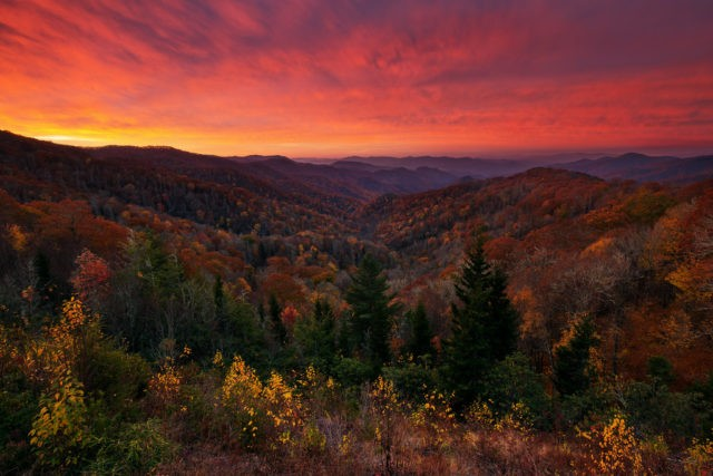 Great Smoky Mountains Fishing Report November 8th